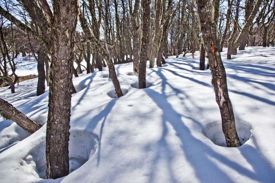 Snowbank2